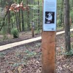 Märchenwald Sinzing
